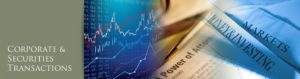 Corporate & Securities Image